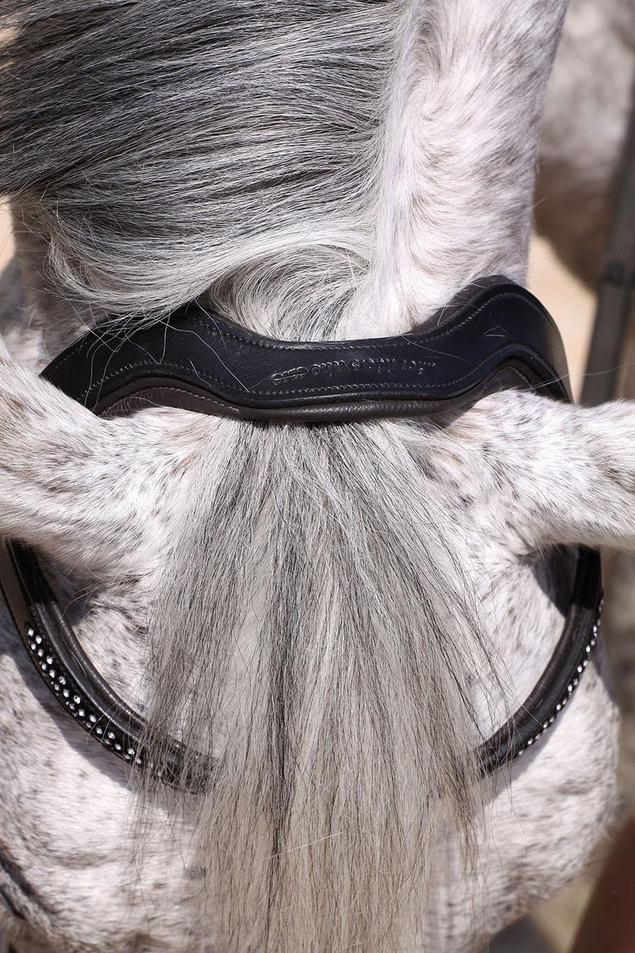 Barefoot Contour Jewel Gebisslose Trense mit Ohrenausschnitt und Bitless Bridle
